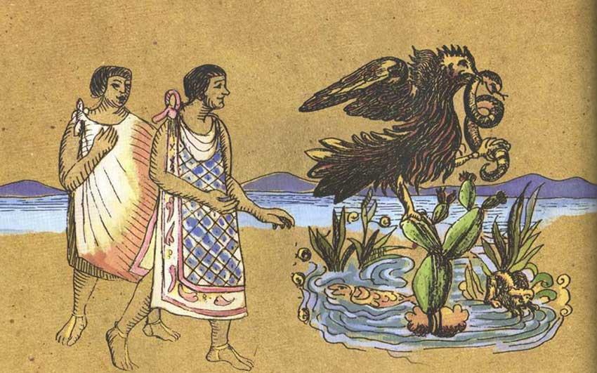 El águila real, símbolo nacional mejicano