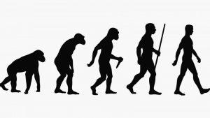 ¿Podemos encontrar la dieta sana a lo largo de la evolución?