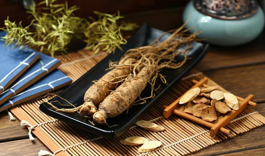 Ginseng coreano, el rey de las hierbas