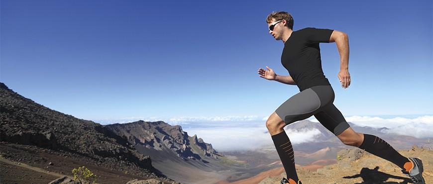 El ginseng incrementa la resistencia física