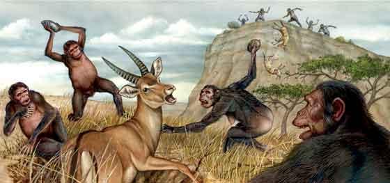 Australopithecus cazando