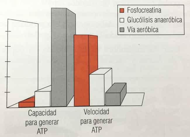 Ventajas y desventajas de las vías de producción de energía