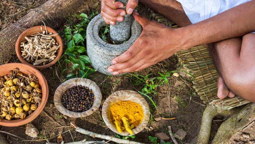 Propiedades curativas del ajo en la Medicina Ayurveda