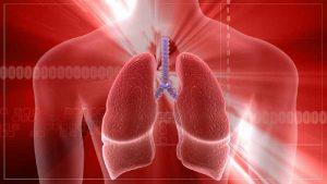 La beneficiosa actividad antimicrobiana y mucolítica hace del ajo un remedio especialmente indicado para las afecciones respiratorias