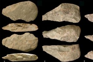 Dieta del Homo habilis e industria olduvayense