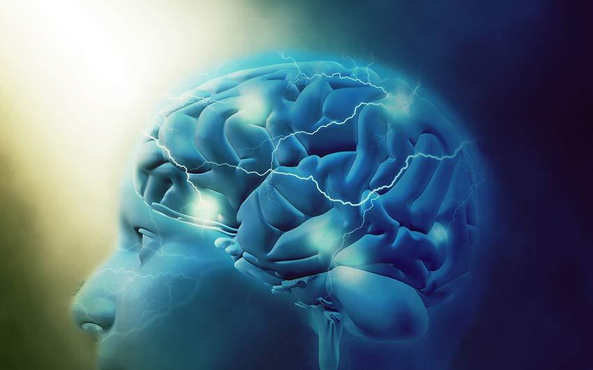 Propiedades del AI en la función cognitiva