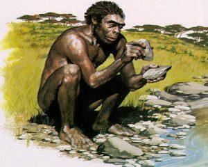Dependencia de a carne en la dieta del homo habilis