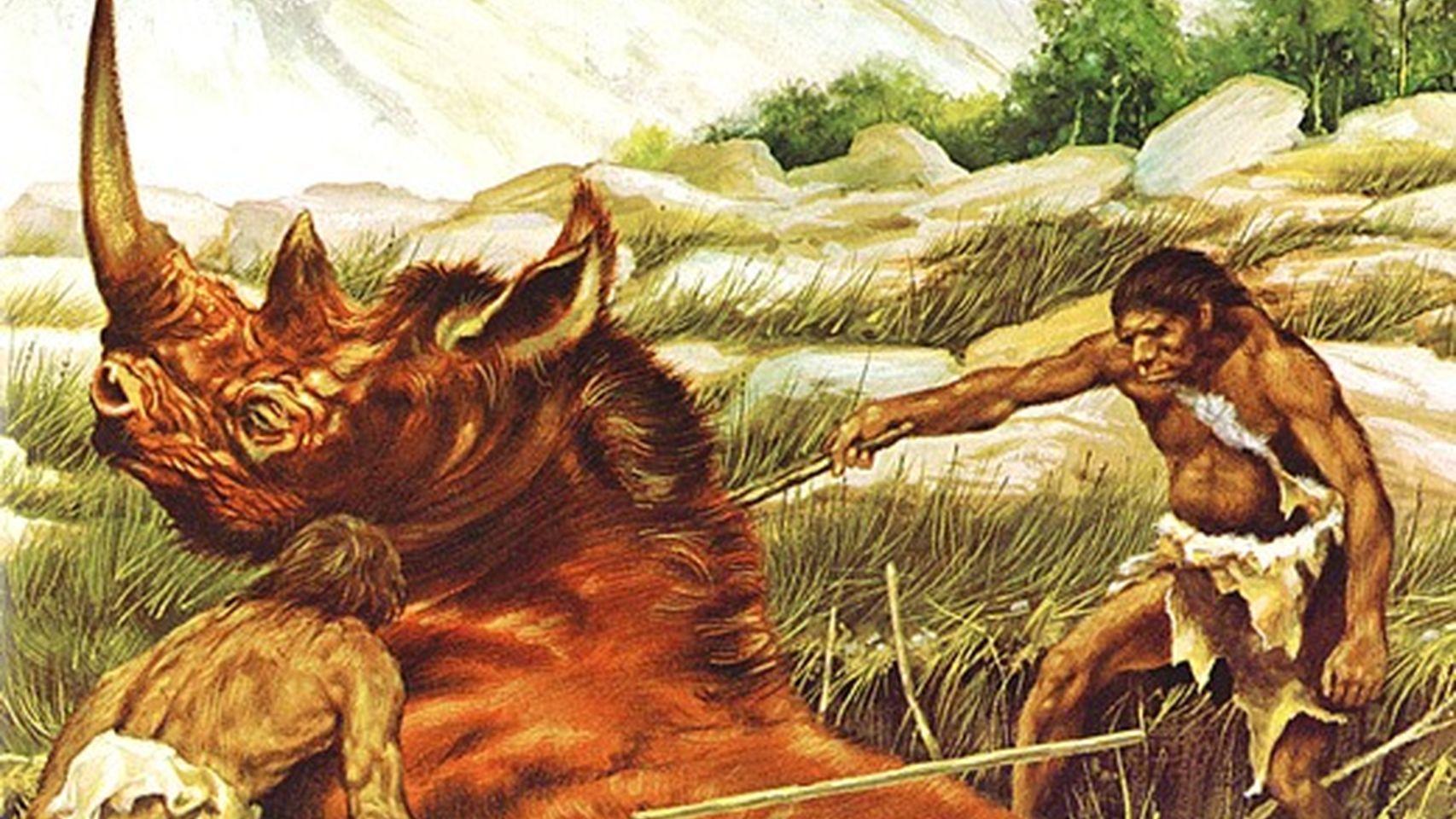 Alimentación del Homo erectus. Dependencia de la carne