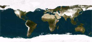 Erectus se aventuró hacia  el norte en plena Edad glacial