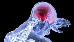 Estrés, sistema nervioso, endocrino e inmune