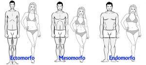 Somatotipos y flexibilidad