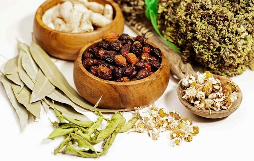 Medicina natural integral, la naturopatía