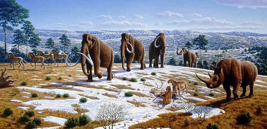 Fauna de la Edad de Hielo