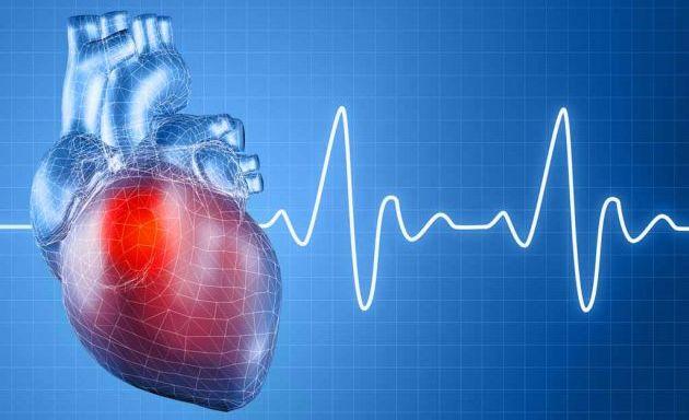 Actividad cardioprotectora del citrus limonum