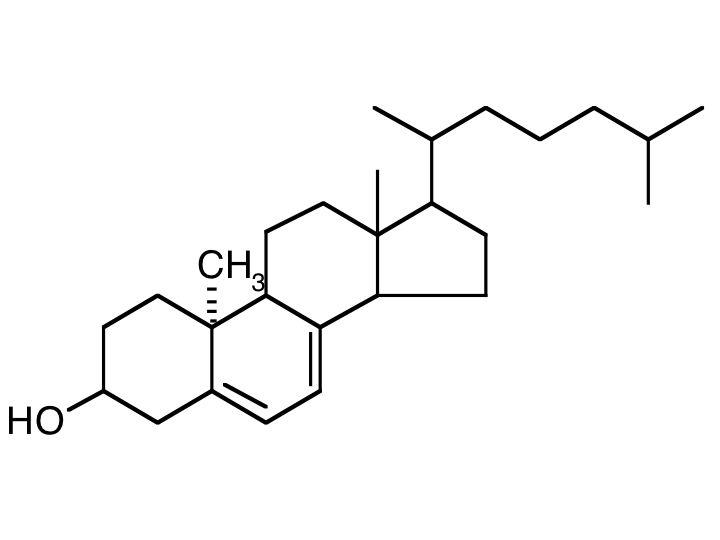 La molécula del sol, la vitamina D