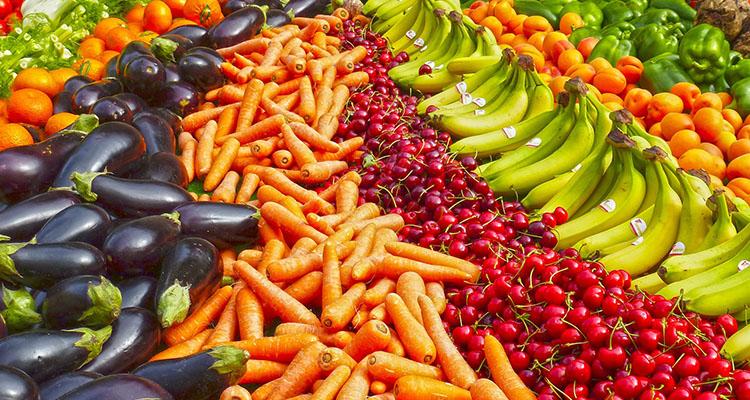 protección dietética frente a la radiación ultravioleta