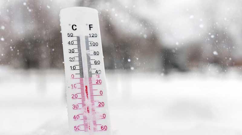 Frío y microbioma