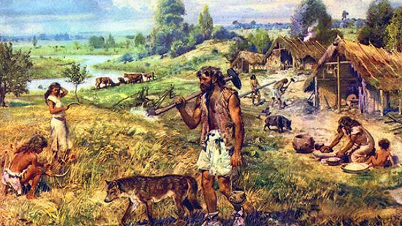 Dieta del homo sapiens en el neolítico
