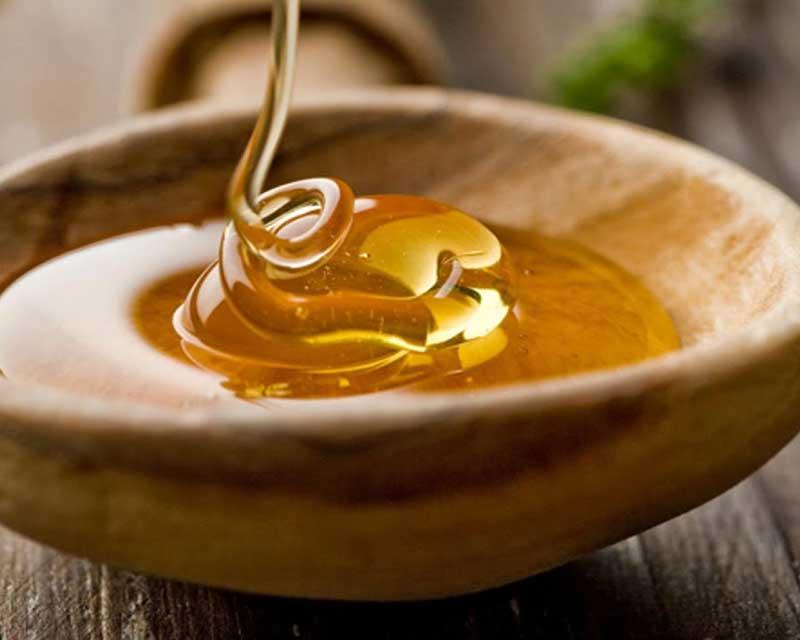 Miel, el alimento olvidado Cordain y la nutrición evolutiva
