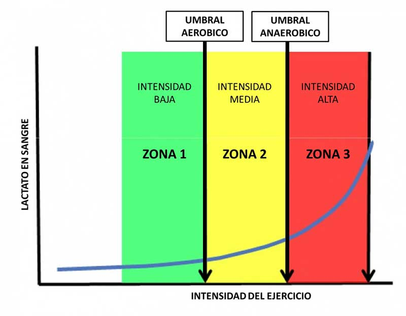 Umbral aeróbico y umbral anaeróbico