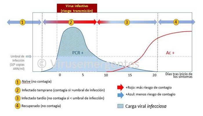 TIEMPOS EPIDEMIOLÓGICOS DEL SARS-CoV-2, el nuevo coronavirus