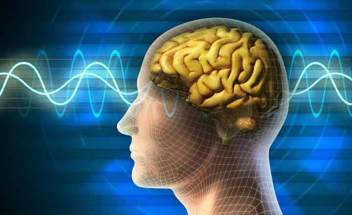 Efectos del electromagnetismo sobre el cerebro