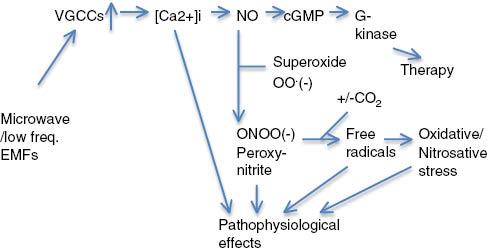Efectos de los campos electromagnéticos en la salud