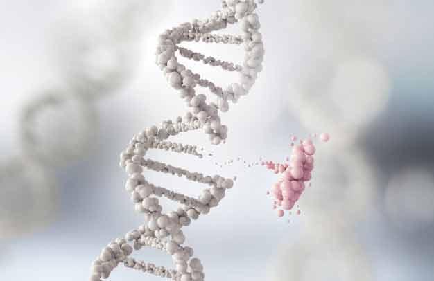 Roturas del DNA por campos electromagnéticos