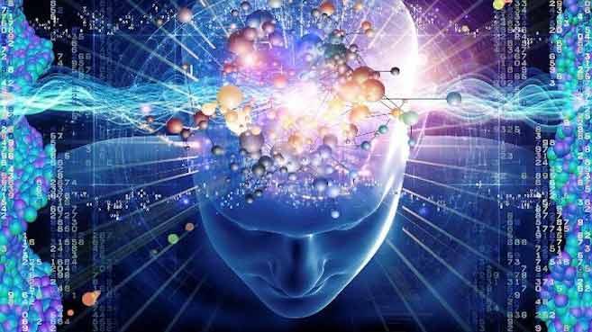 Efectos de EMF sobre el sistema nervioso, incluyendo el cerebro