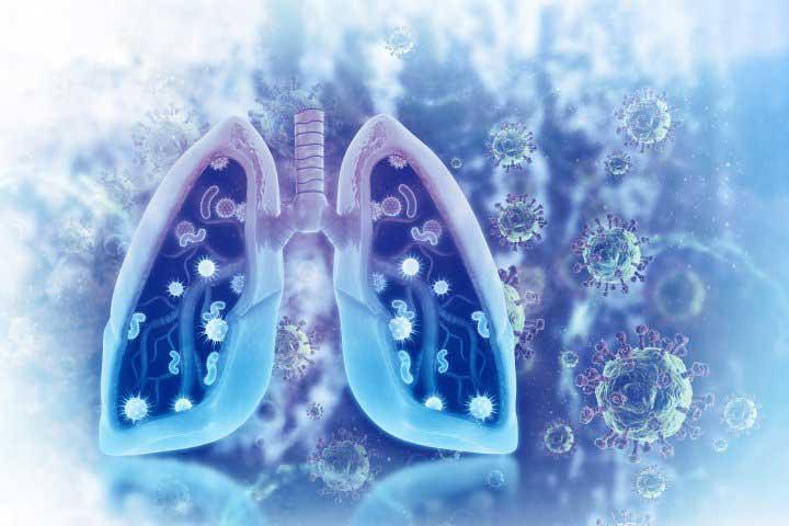 Microbiota pulmonar