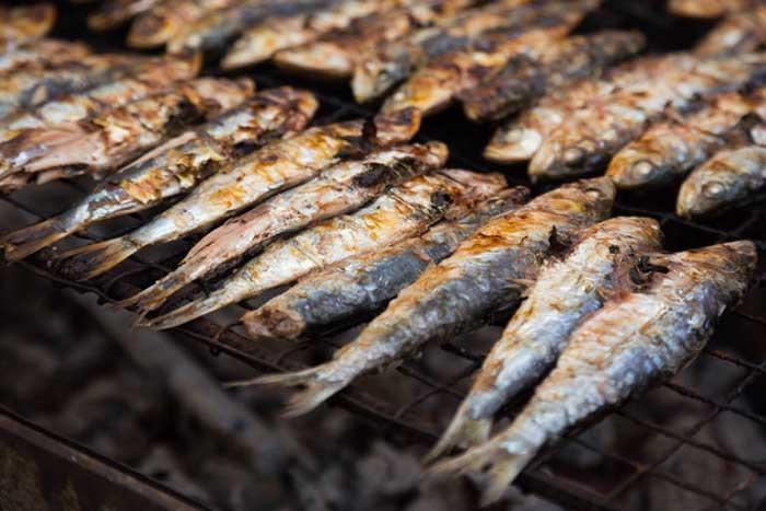 Plásticos en sardinas y anchoas