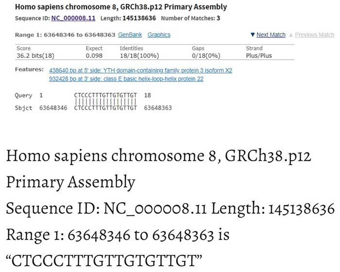 Parte de la secuencia del cromosoma 8 humano