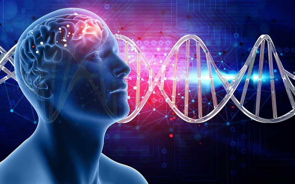 La mente influye en nuestro cuerpo