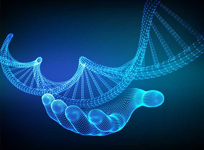 Podemos modificar nuestros genes