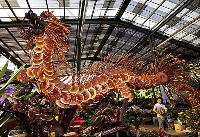 Reishi y la energía del dragón