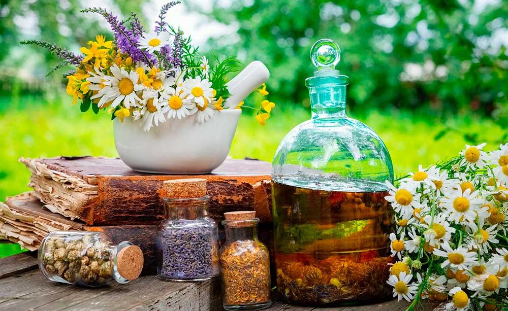 Terapia con plantas medicinales