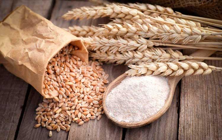 Cereales, un alimento prohibido de la dieta hipotóxica de Seignalet