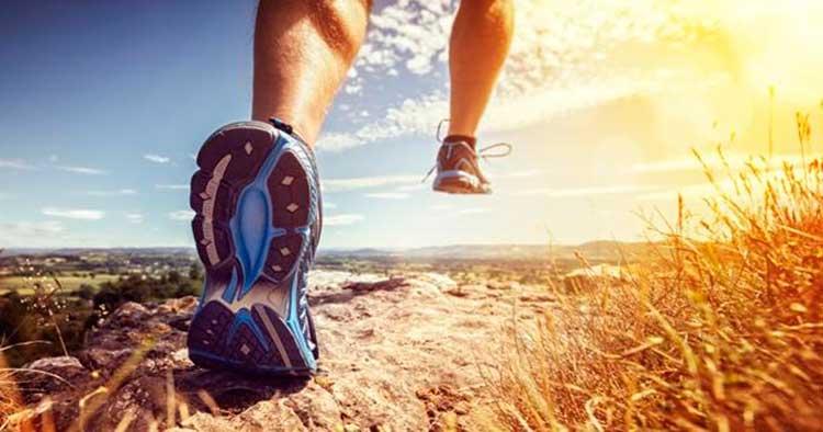 Actividad física y función cognitiva