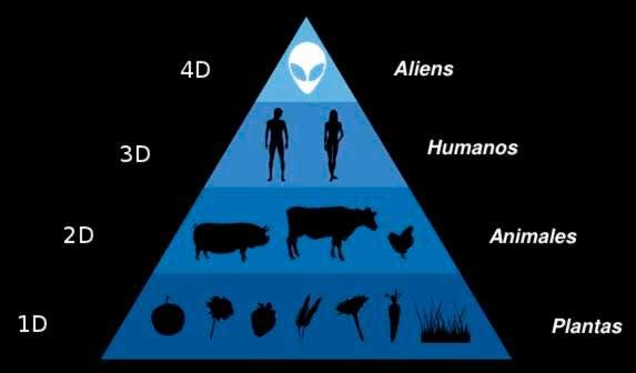 Cadena alimentaria, incluyendo los guardianes del espacio